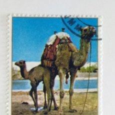 Sellos: SELLO DE UMM AL QIWAIN 1 R - 1972 - DROMEDARIOS - USADO SIN SEÑAL DE FIJASELLOS. Lote 261697270