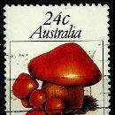 Sellos: AUSTRALIA YV 0742 HONGOS: CORTINARIUS CINNABARINUS (USADO). Lote 161004949