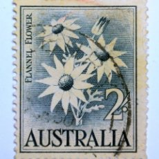 Sellos: SELLO POSTAL AUSTRALIA 1959, 2 CHELÍN, FLANNEL FLOWER, USADO. Lote 153292238
