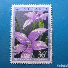 Sellos: +AUSTRALIA 1986, ORQUIDEAS AUSTRALIANAS, YVERT 973. Lote 206154982
