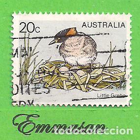 AUSTRALIA - MICHEL 655 - YVERT 637 - PÁJAROS - ZAMPULLÍN COMÚN. (1978). (Sellos - Extranjero - Oceanía - Australia)