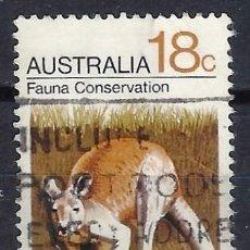 Sellos: AUSTRALIA 1971 - CONSERVACIÓN DE LA FAUNA, CANGURO ROJO - SELLO USADO. Lote 211614305