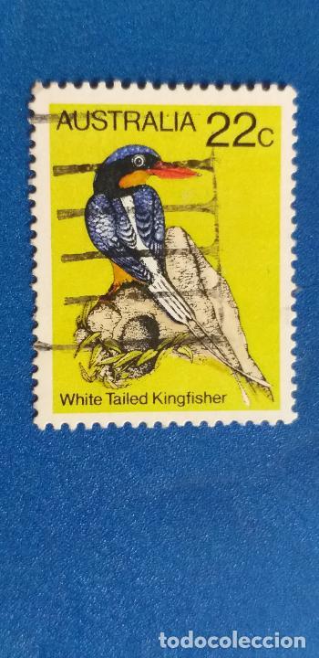 AUSTRALIA - MICHEL 705 - YVERT 694 - PÁJAROS - MARTÍN PESCADOR DE COLA BLANCA. (1980). (Sellos - Extranjero - Oceanía - Australia)