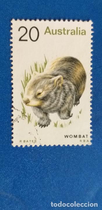 AUSTRALIA. AÑO 1974. FAUNA, WOMBAT. YVERT 527 (Sellos - Extranjero - Oceanía - Australia)