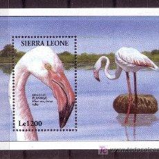 Sellos: SIERRA LEONA HB 249** - AÑO 1994 - FAUNA - AVES - FLAMENCO. Lote 21707405