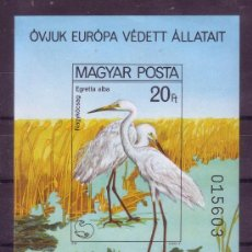 Sellos: HUNGRIA HB 150** - SIN DENTAR AÑO 1980 FAUNA - AVES - AÑO EUROPEO DE LA PROTECCION DE LA NATURALEZA. Lote 16650431