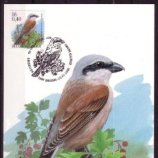 Sellos: BELGICA 2885 - AÑO 2000 - FAUNA - AVES. Lote 18468838