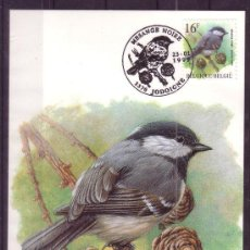 Sellos: BELGICA 2804 - AÑO 1999 - FAUNA - AVES. Lote 14840600