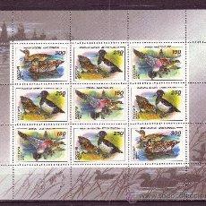 Sellos: RUSIA 6078/80 HB* - AÑO 1994 - FAUNA - AVES - PATOS. Lote 22257362