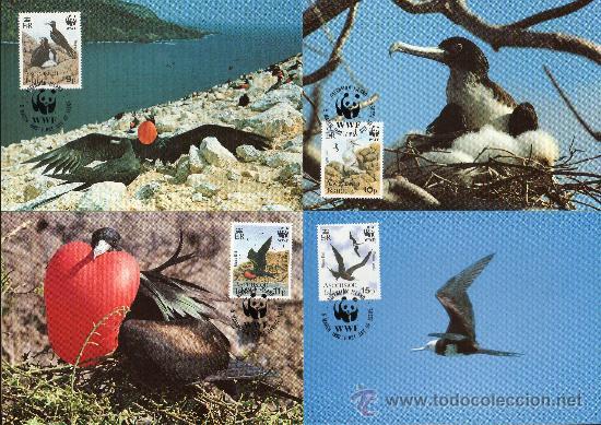 ASCENSIÓN AÑO 1990 YV 503/06 TMX - WWF - CONSERVACIÓN DE LA NATURALEZA - FAUNA - AVES - FRAGATAS (Sellos - Temáticas - Aves)