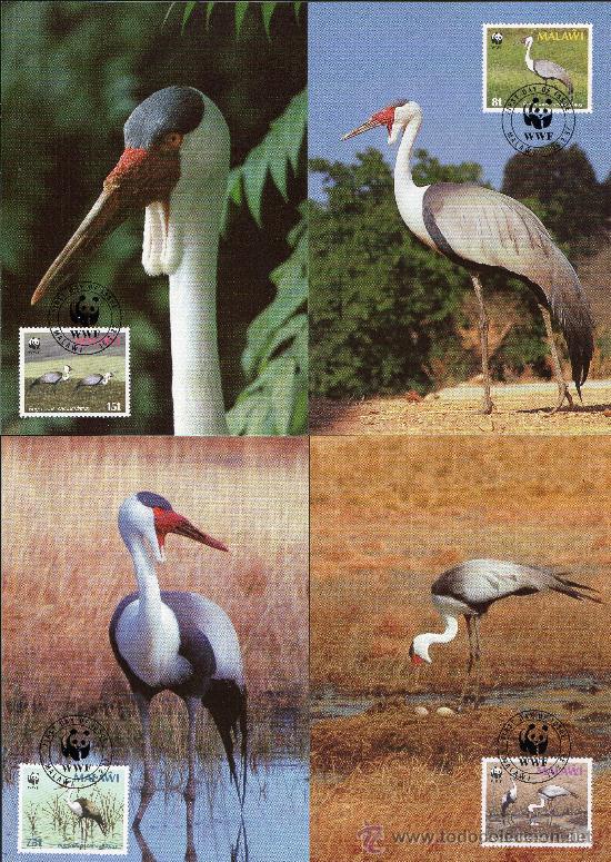 MALAWI AÑO 1987 YV 489/92 TMX - WWF - CONSERVACIÓN DE LA NATURALEZA - FAUNA - AVES (Sellos - Temáticas - Aves)