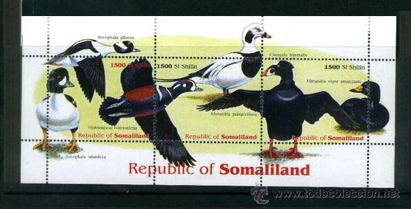 REPUBLICA DE SOMALIA- HOJA BLOQUE TEMATICA AVES- BIRDS- PAJAROS - PATOS (Sellos - Temáticas - Aves)