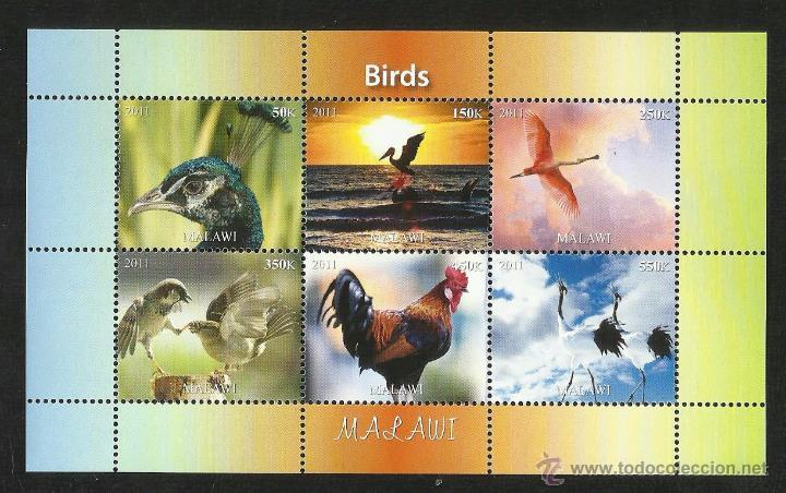 MALAWI 2011 HOJA BLOQUE SELLOS TEMATICA FAUNA AVES- PAJAROS- BIRDS (Sellos - Temáticas - Aves)