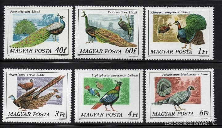 HUNGRIA 2550/55** - AÑO 1977 - FAUNA - AVES (Sellos - Temáticas - Aves)