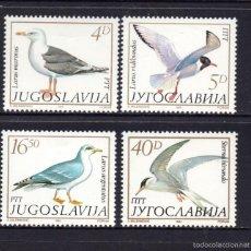 Sellos: YUGOSLAVIA 1935/38** - AÑO 1984 - FAUNA - AVES MARINAS. Lote 143012349