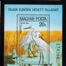 Sellos: HUNGRIA HB 150** - AÑO 1980 - FAUNA - AVES - AÑO EUROPEO DE PROTECCION DE LA NATURALEZA. Lote 78481973