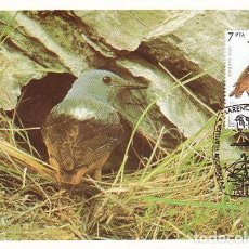 Sellos: EDIFIL 2821, ROQUERO ROJO, TARJETA MAXIMA DE PRIMER DIA ESPECIAL DE TARRAGONA DE 4-12-1985. Lote 97944691