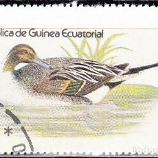Sellos: 1978 - GUINEA ECUATORIAL - AVES ACUATICAS - NORTHEM PINTAIL - ANADE RABUDO. Lote 98669851