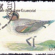 Sellos: 1978-GUINEA ECUATORIAL - AVES ACUATICAS - COMMON TEAL. Lote 98670707