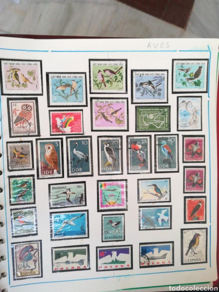 105 SELLOS TEMÁTICA AVES. (Sellos - Temáticas - Aves)