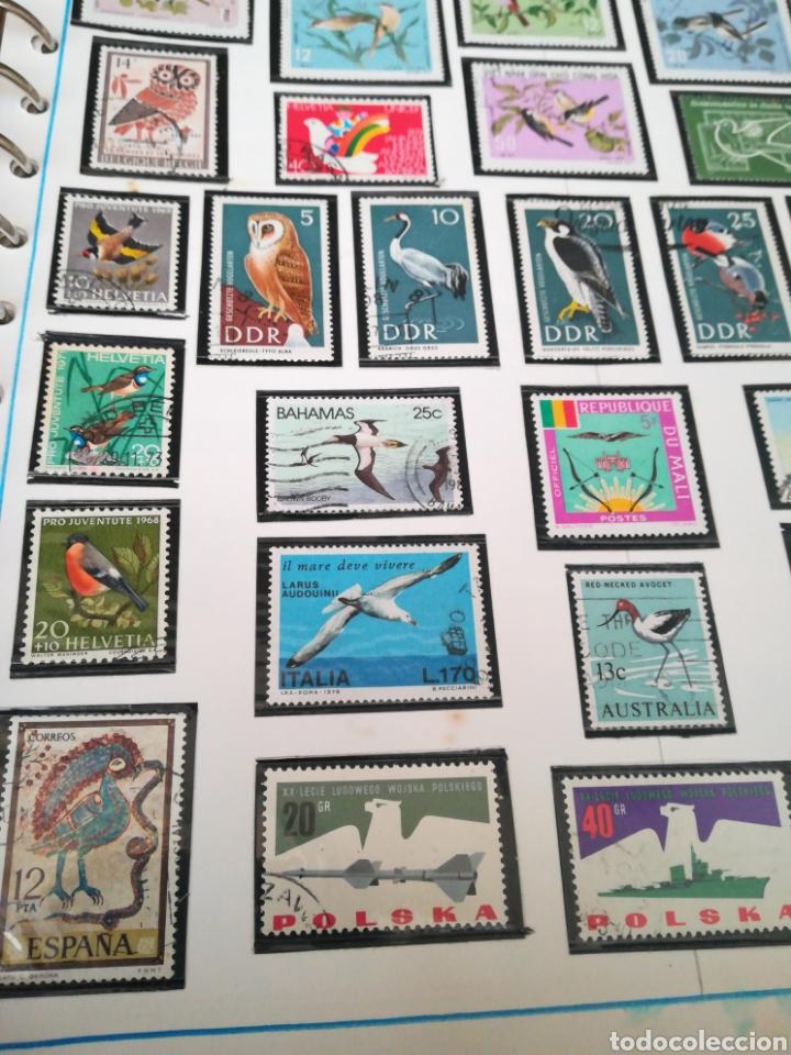 Sellos: 105 sellos temática Aves. - Foto 6 - 107712670