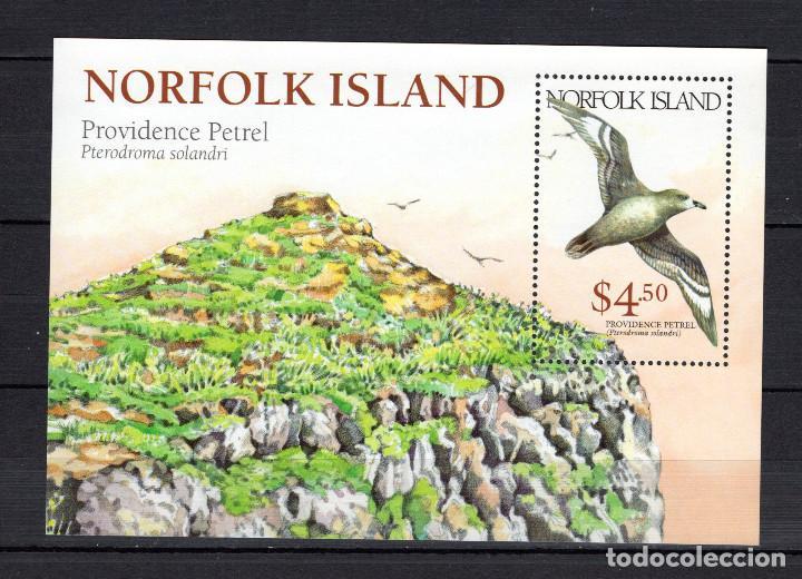 NORFOLK HB 32** - AÑO 1999 - FAUNA - AVES (Sellos - Temáticas - Aves)