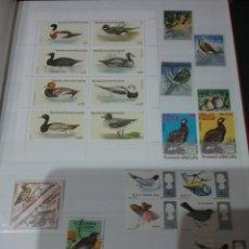 Sellos: CLASIFICADOR TEMATICO AVES (13 FOTOS)/AVES/PAJAROS/NATURALEZA/ANIMALES/OVIPAROS/. Lote 137924829