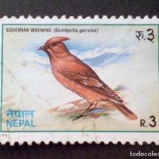 Sellos: 1992 NEPAL BOMBYCILLA GARRULUS. Lote 142710598