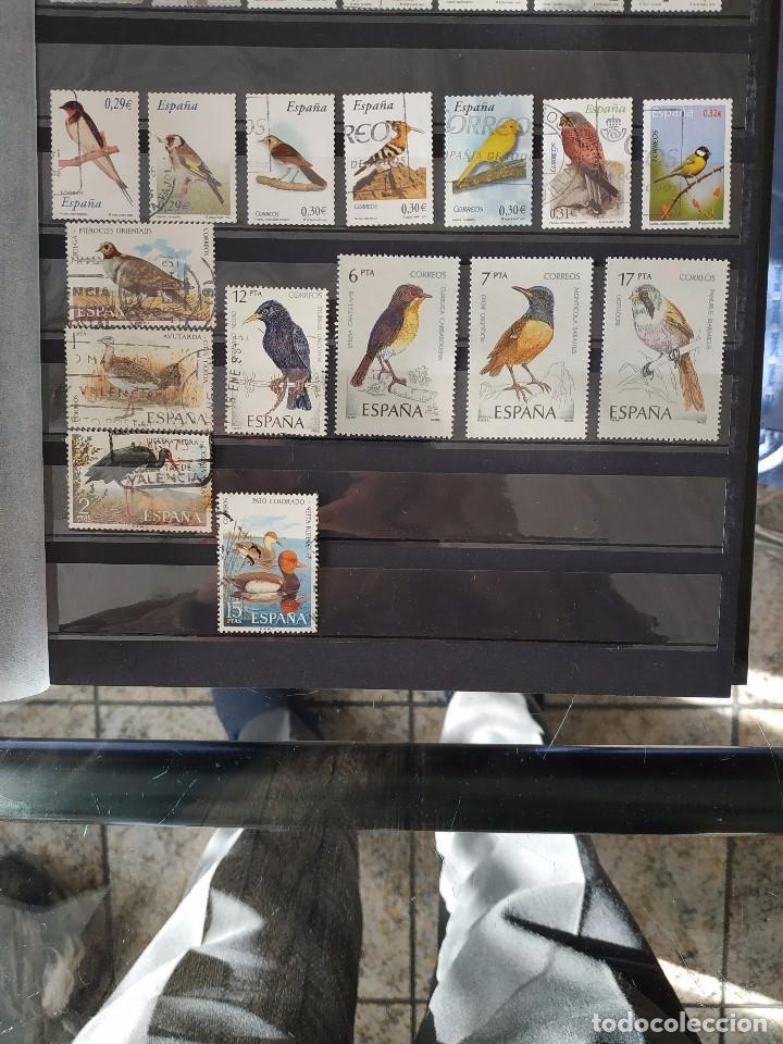 ESPAÑA - AVES 12 SELLOS + 3 FACSIMILES (Sellos - Temáticas - Aves)