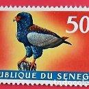 Sellos: SENEGAL. A 67 PÁJAROS: ÁGUILA BATELEUR. 1968. . SELLOS NUEVOS Y NUMERACIÓN YVERT.. Lote 150714649