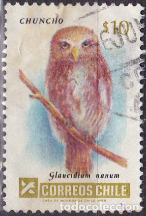 1985 - CHILE - AVES - CHUNCHO - MOCHUELO PATAGON - MICHEL 1084 (Sellos - Temáticas - Aves)