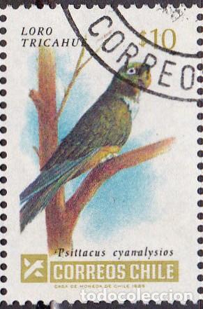 1985 - CHILE - AVES - LORO BARRANQUERO - MICHEL 1078 (Sellos - Temáticas - Aves)