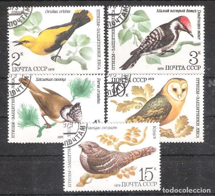 RUSIA (URSS) Nº 4627/4631º AVES DEL BOSQUE. SERIE COMPLETA (Sellos - Temáticas - Aves)