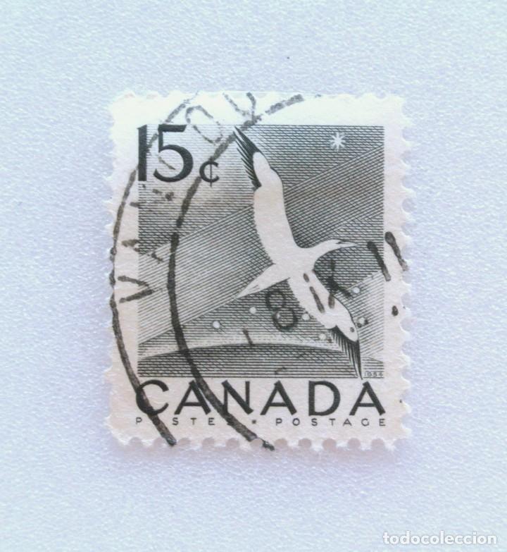 SELLO POSTAL CANADA 1954, 15 CENTS , ALCATRAZ DEL NORTE , CONMEMORATIVO, USADO (Sellos - Temáticas - Aves)