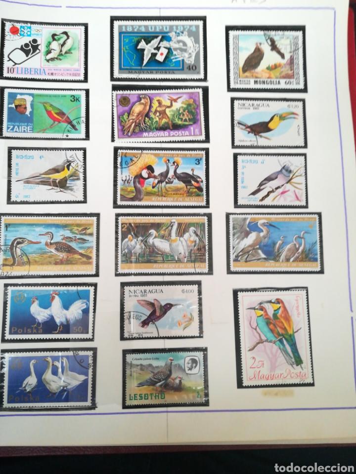 Sellos: 105 sellos temática Aves. - Foto 2 - 107712670
