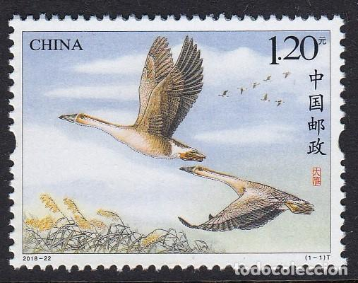 CHINA 2018 GANSO SALVAJE - AVES PAJAROS (Sellos - Temáticas - Aves)