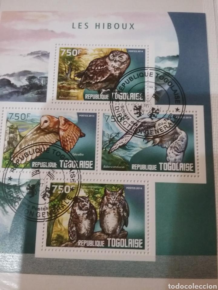MINI-CLASIFICADOR BUHOS/MISMO PRECIO; CON O SIN CLASIFICADOR/AVES RAPACES/MOCHUELO/LECHUZ/VER FOTOS (Sellos - Temáticas - Aves)