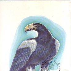 Francobolli: RUSIA (URSS) 4914 HALIAEETUS PELAGICUS. Lote 165378354