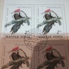 Sellos: SELLOS HUNGRIA (MAGYAR P) MTDOS/1985/II CENT NACIMIENTO ORNITOLOGO J. JAMES/FAUNA/AVES/PAJAROS/. Lote 171071033