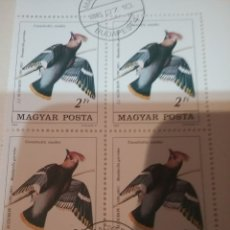 Timbres: HUNGRIA (MAGYAR P) MTDOS/1985/II CENT NACIMIENTO ORNITOLOGO J. JAMES/FAUNA/AVES/PAJAROS/CARPI. Lote 171071107