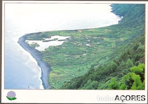 Sellos: Portugal ** & Intero, Marrequinha, Anas Crecca, Faja dos Vimes Sao Jorge Açores 1998 (9) - Foto 2 - 182488132