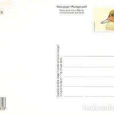 Sellos: PORTUGAL ** & I.P PATO, ANAS CRECCA, LISBOA, CASTILLO DE SAN JORGE 1998 (6894). Lote 184398905