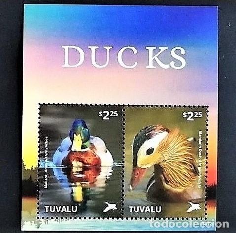 Sellos: TUVALU - 2 HOJAS - SERIE COMPLETA + HOJITA - AVES - NUEVAS, SIN FIJASELLOS ( 3 FOTOS) - Foto 3 - 188564905