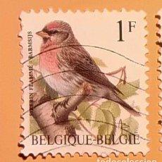 Sellos: BÉLGICA - AVES - ACANTHIS FLAMMEA - PARDILLO NORTEÑO.. Lote 190383832