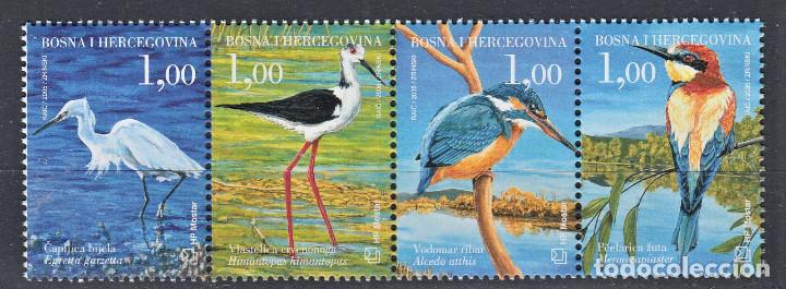 BOSNIA I HERZEGOVINA 2005 PAJAROS AVES (Sellos - Temáticas - Aves)