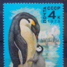 Sellos: AVES PINGÜINOS SELLO NUEVO DE RUSIA. Lote 209065013
