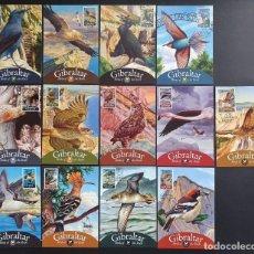 """Sellos: 13 TARJETAS MÁXIMAS DE GIBRALTAR 2008 """"BIRDS OF THE ROCK"""" EDICIÓN LIMITADA. Lote 222598200"""