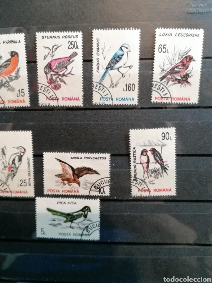 Sellos: Rumanía Aves Pájaros año 1993 Yvert 4065/74 usado serie completa - Foto 4 - 224928568