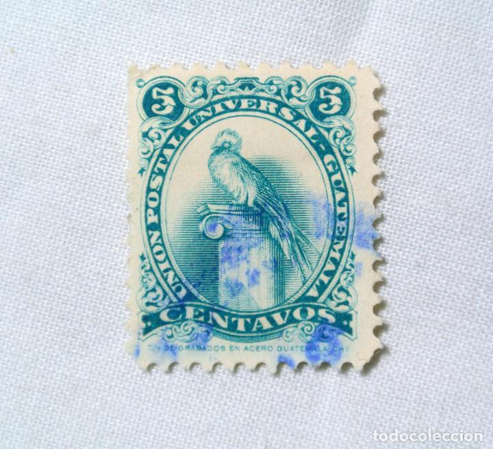 ANTIGUO SELLO POSTAL GUATEMALA 1960, 5 CENTAVOS, QUETZAL ,USADO (Sellos - Temáticas - Aves)