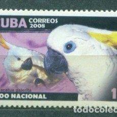 Sellos: 5117 CUBA 2008 MNH HAVANA ZOO - PARROT. Lote 226331136
